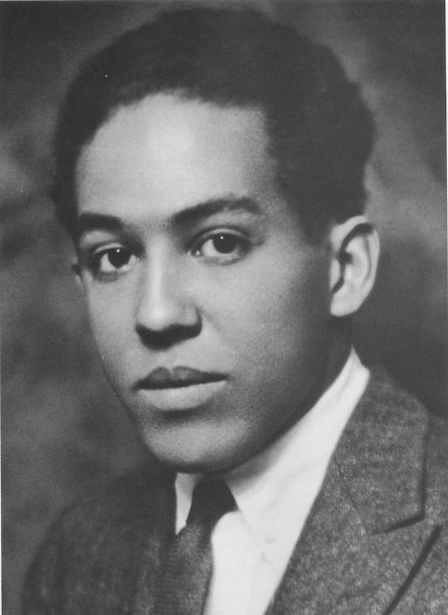 a history in the novel negro by james mercer langston hughes Langston hughes: the long tradition of black poets langston hughes (james mercer langston black history heroes blog.