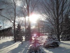 A February Day (gdw photo)