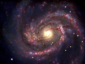 SN 1979C  NASA